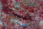 612_1-mapa-satelitarna-w-kompozycji-cir-landsat-7-etmhpf