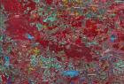 618_1a-mapa-satelitarna-w-kompozycji-cir-landsat-7-etmihs