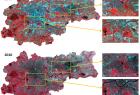 Obrazy satelitarne Krakowa 2006-2010 (kompozycja CIR)