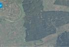 Puszcza Niepołomicka - Październik 2014