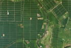 Planet_AG_Sumatra-Plantation-full.5.17.15