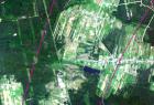 Koszęcin 2012-07-07, 4 lata po trąbie powietrznej (kompozycja 321)