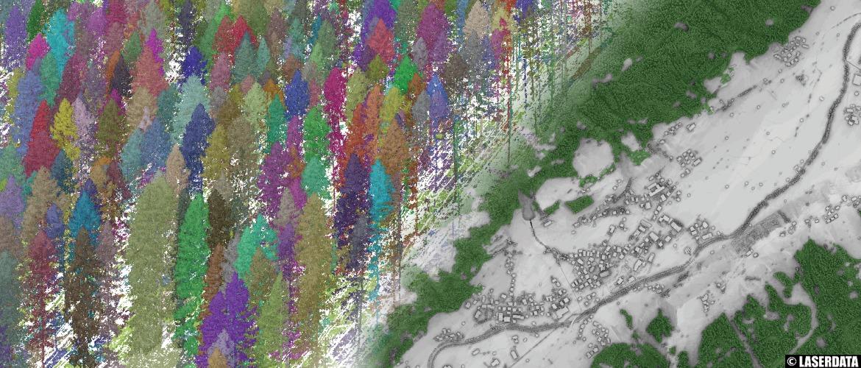 forest mask, map layer, single tree derivation, tree shape metrics, stem volume, biomass, Laserdata, LIS, LIS Pro 3D, software, LIS Forestry